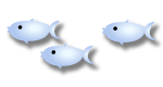 swimming fish graphic